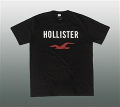 HOLLISTER T-SHIRT #120